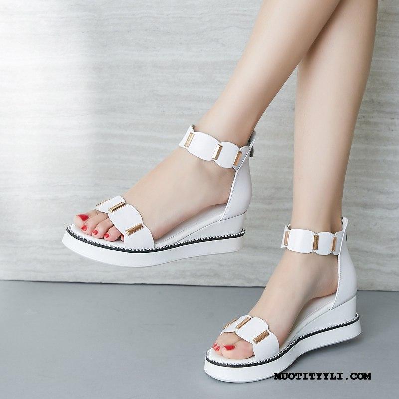 Naisten Sandaalit Osta Kengät Rooma Naisille Kiilakorkokengät Tasainen Valkoinen Punainen